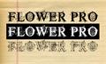 Thumbnail for FlowerProDemo